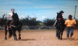 Ο Ιππικός Σύλλογος Κεφαλονιάς (RA) στην 81η έκθεση αλόγων Ανδραβίδας