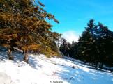 Χιονάκι στον Αίνο