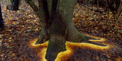 Scottish sculptor Andy Goldsworthy creates transitory works of art by arranging leaves, sticks, rocks or anything else he can find outside.