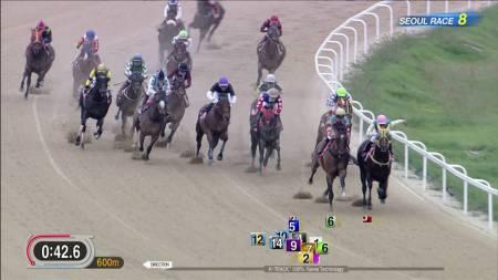 【コリアスプリント 2016】動画・結果/スーパージョッキーが優勝・日本馬はグレープブランデーの3着が最高