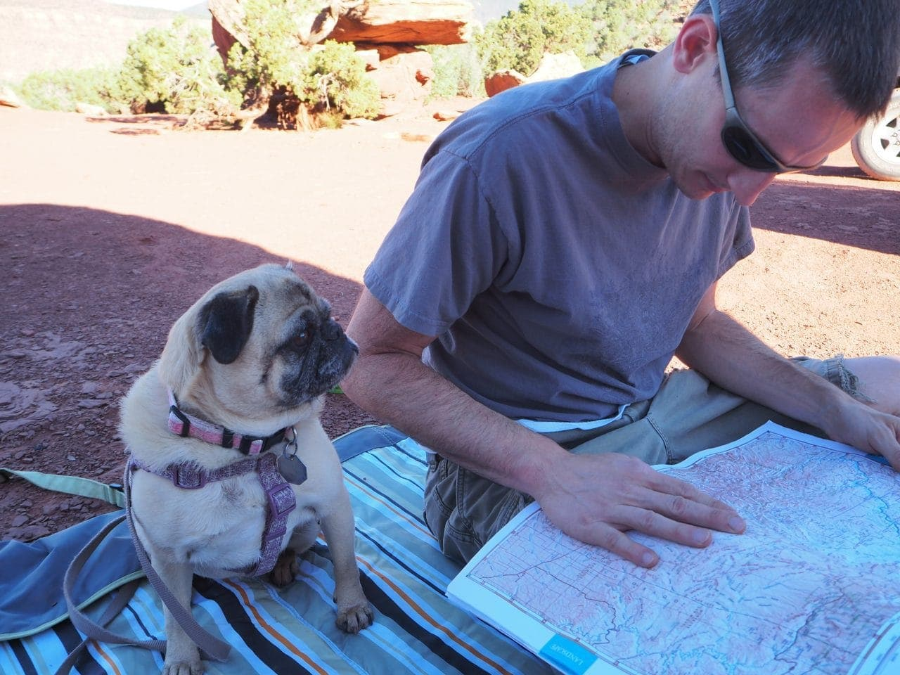 Keith and Lexi looking at the map