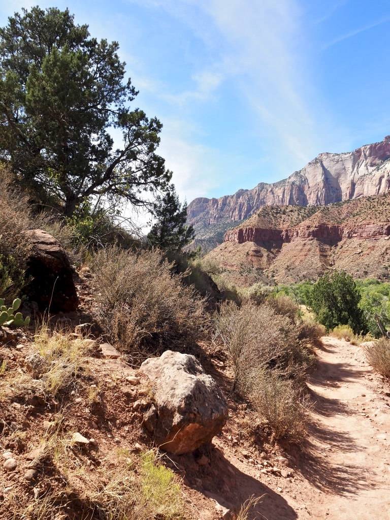 All the pictures from the Watchman Trail look like paintings to me!