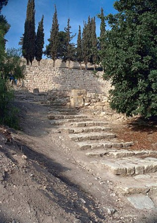 36 Steps to the House of Caiaphas (Google Image)