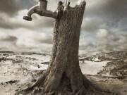 Ahmed Necip YILDIRIM - Bir Rüyadan Uyandım Ki