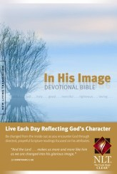 In His Image Bible Cover