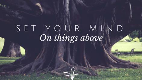 A Set Mind