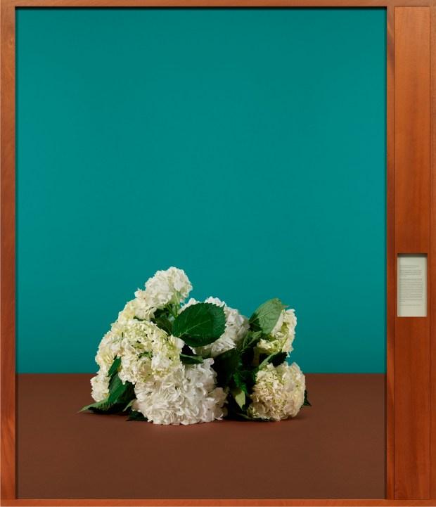 flowers artwork in museum