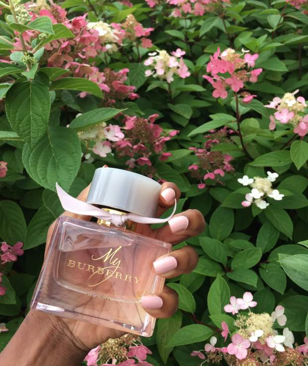 fragrance with flowers background