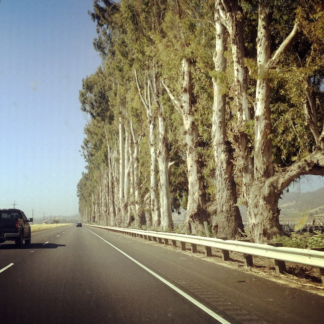 South on the 101