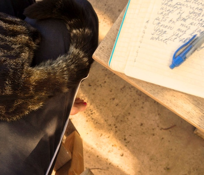 To write, or not to write…