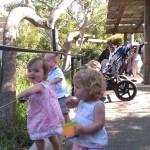 Sierra, Camille, Jett & Tripp at the SB Zoo
