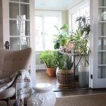 Crazy Plant Lady Sunroom Kelly Elko