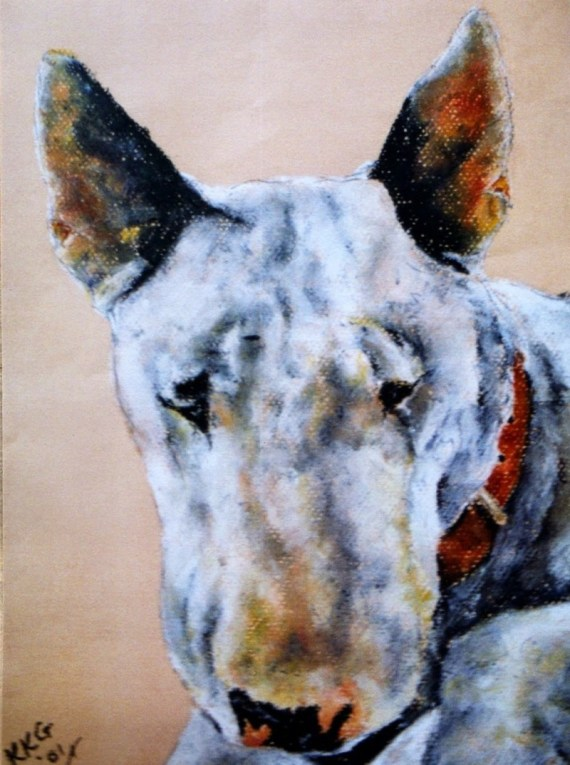 English bull terrier pet portrait - chalk pastel - Kelly Goss