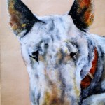 English bull terrier pet portrait - chalk pastel - Kelly Goss