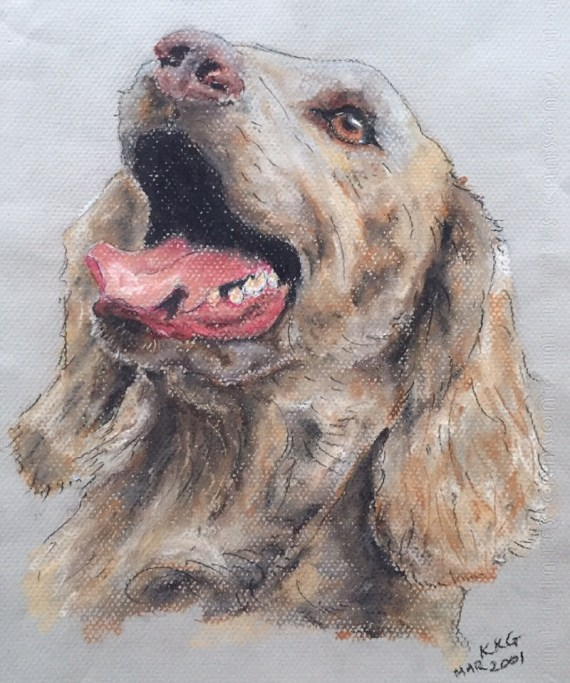 Weimaraner pet portrait - chalk pastels - Kelly Goss