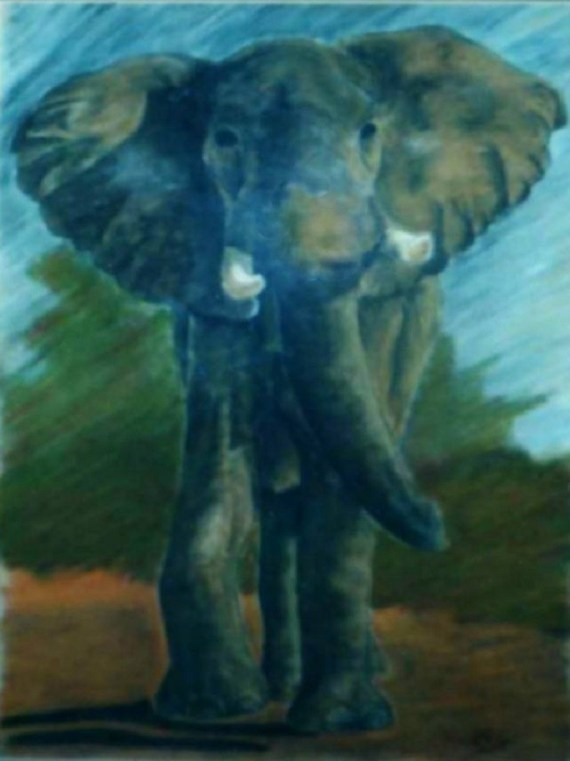 Elephant - chalk pastels on paper - Kelly Goss Art