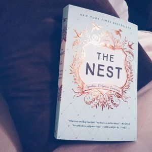 the nest book on top a chocolate colored pillow