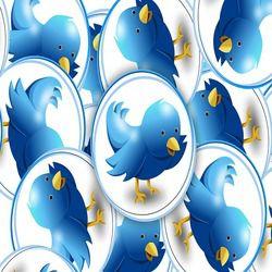 Twitter birds blue