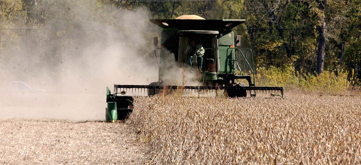 soybean soybeans farming markets generic harvest