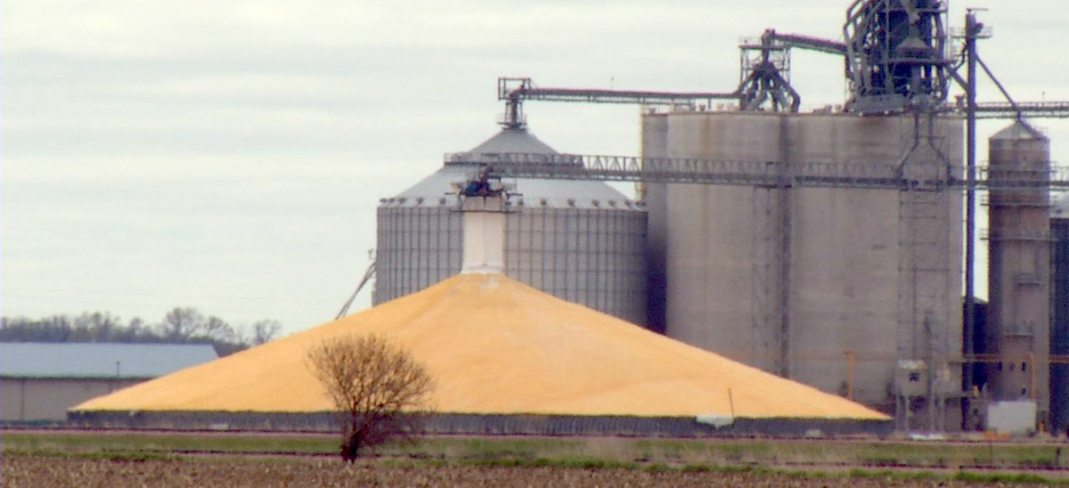KELO Markets Corn Pile