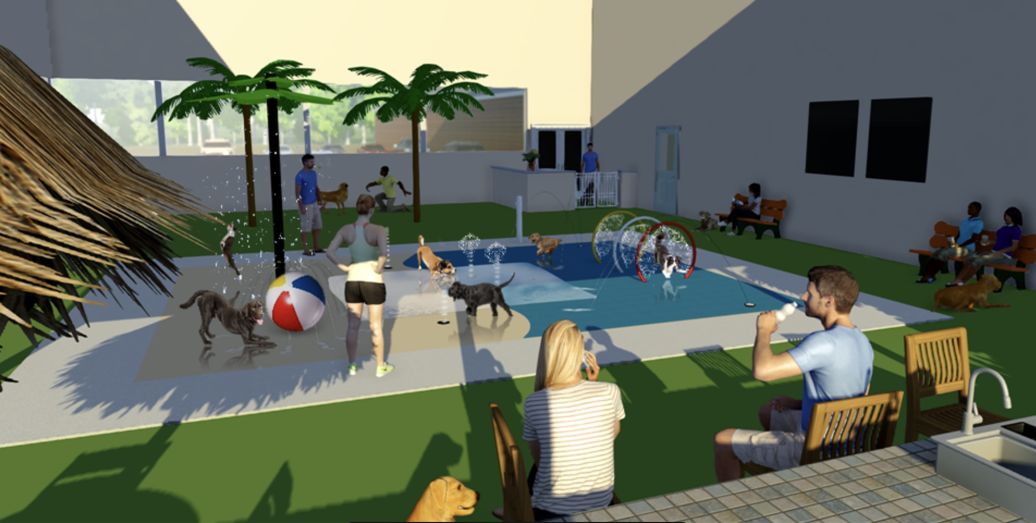 Indoor Dog Water Park And Tiki Bar Coming To Harrisburg