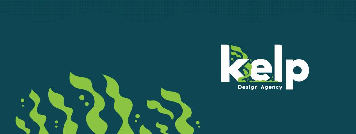 Introducing Kelp—Hernando County's First Design & Development Agency  🎉🎉🎉