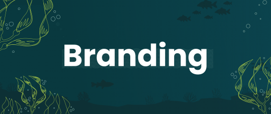 Branding-Featured-image