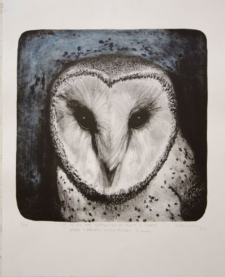 Barn-Owl-Kmcnickle-lithograph