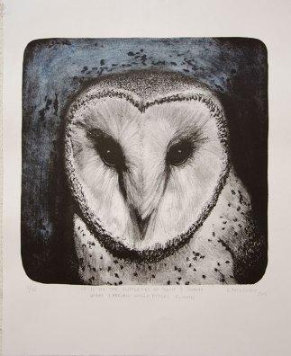 Barn-Owl-Kmcnickle-lithograph