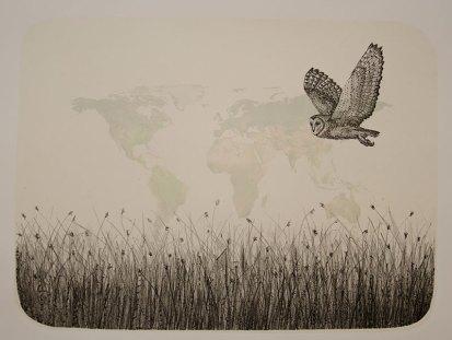 barn-owl-lithograph-flight-map-kmcnickle