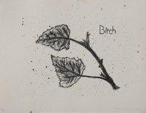 "Birch, Tree Accessories - 8x10"" Lithograph, 2013"