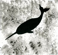 """Narwhal- ink wash 5x5"""""""