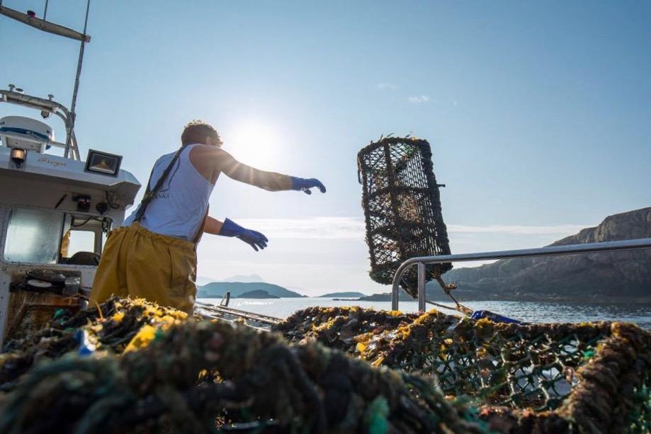 keltic seafare scottish live shellfish