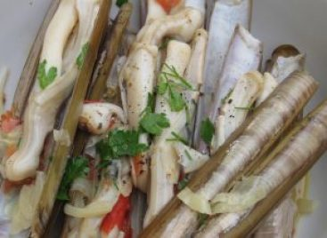 Razor Fish - Seafood served on a plate