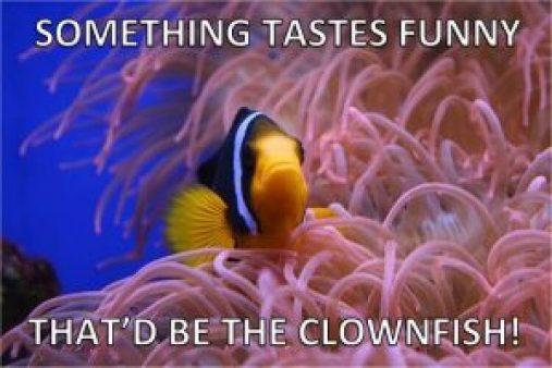 funny clownfish joke