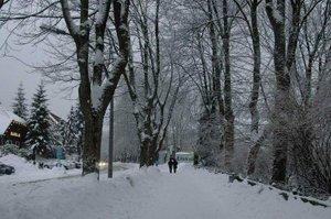 Berwisata Musim Dingin di Braunlage, Harz