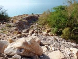 Resor Laut Mati