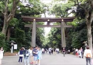 Seputaran Kuil Meiji Tokyo
