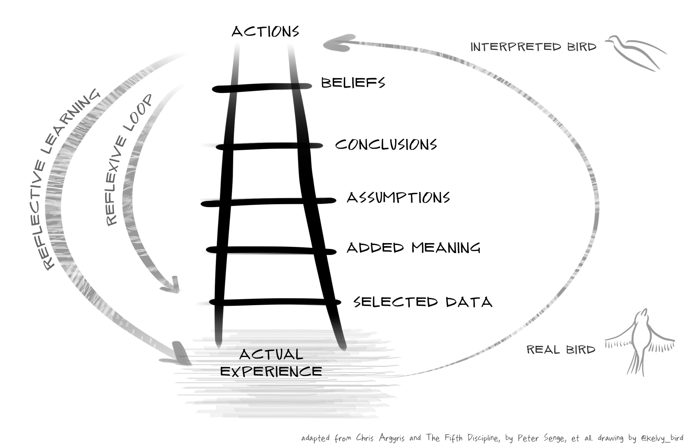Ladder Of Inference Model