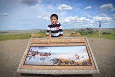 加拿大亞伯達-尋找恐龍之旅 (2)