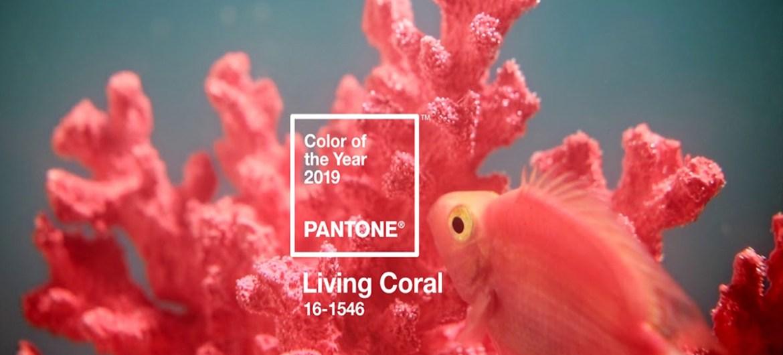 Coral living, il 2019 si tinge di corallo