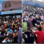 Breaking: Many #Endsars protesters shot dead at Lekki Toll Gate