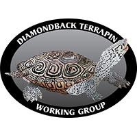 Illustrative logo example
