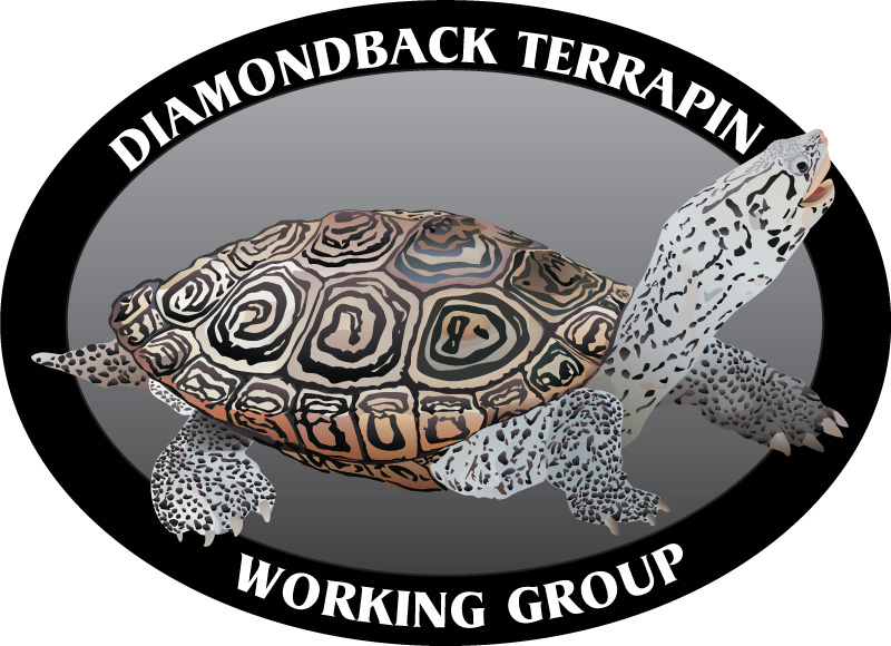 Diamondback Terrapin Working Group Logo designed by Kemp Design Services, Photo real logo,