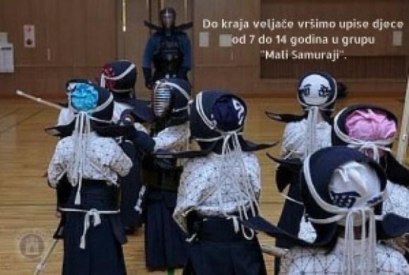 Mali samuraji