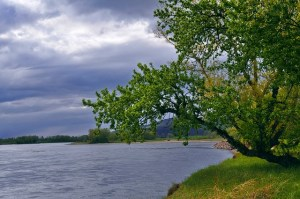river-83740_640