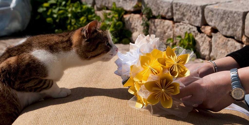 kendra-creations-bouquet-sposa-alternativi-bari