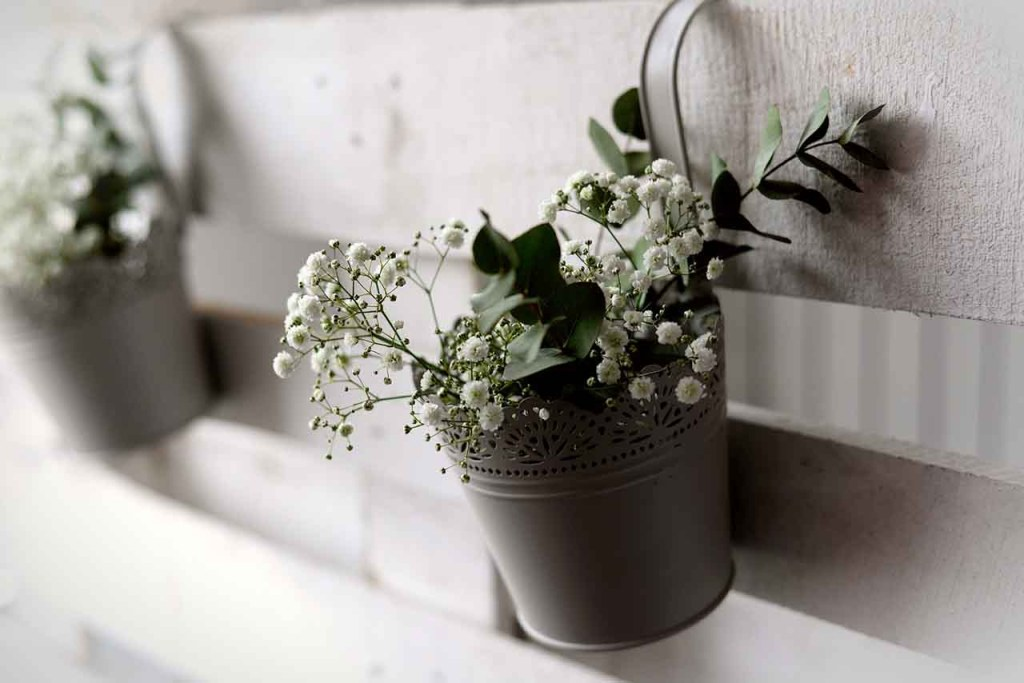 bouquet gypsophila