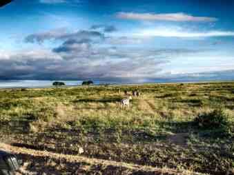 kenia-afrika-reise-bilder-019