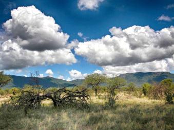 kenia-afrika-reise-bilder-068